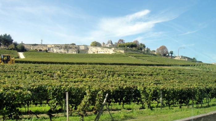 Bordeaux-StEmilion