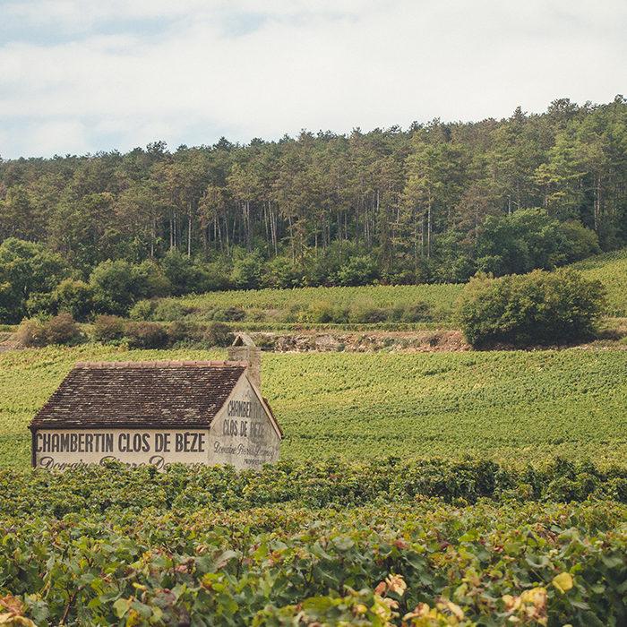 bourgogne-wijn
